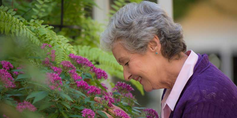 Starting Your Journey to Senior Living